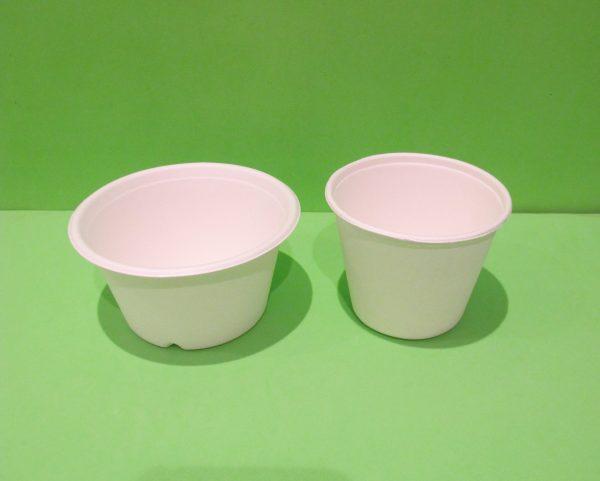 bowls con tapa bagazo de caña