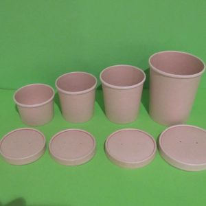 Bowls bambu biodegradables